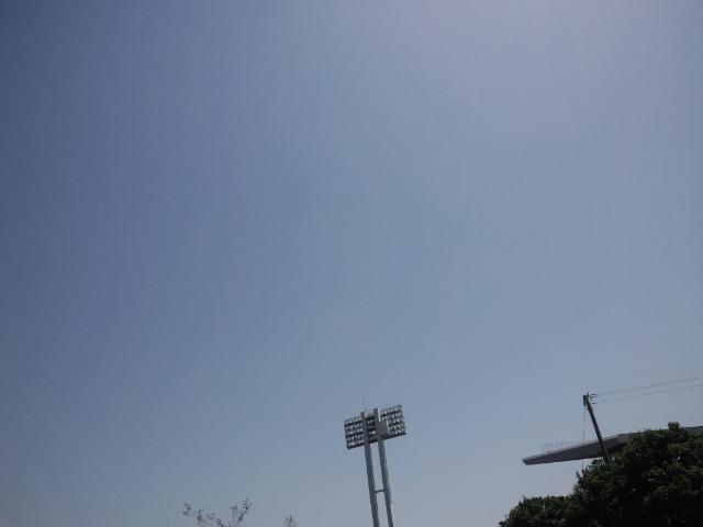 夏かよ!暑いわ!
