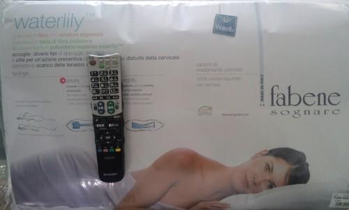 ファベ社の枕・オルトリリー