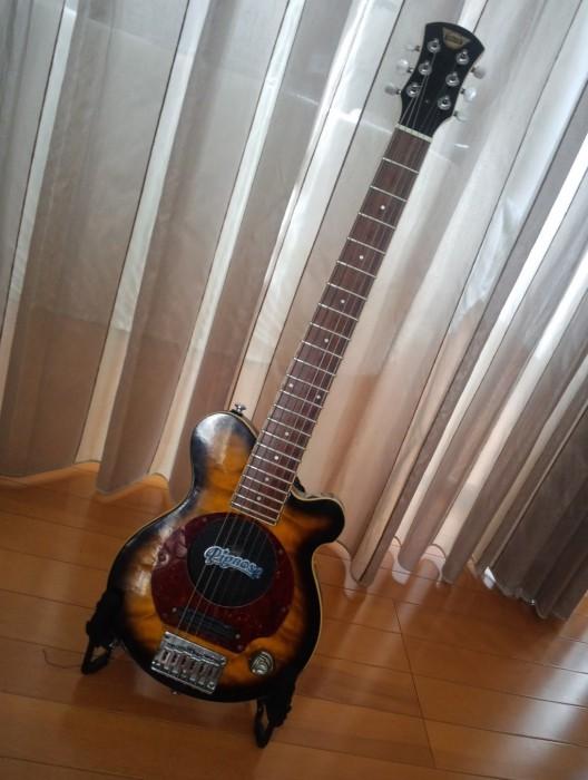 ピグノーズ・ギター